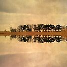 Shoreline Reflections by Kasia-D