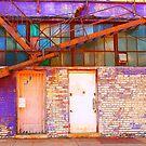 The Pretty Side of Urban Decay by Cheri Sundra