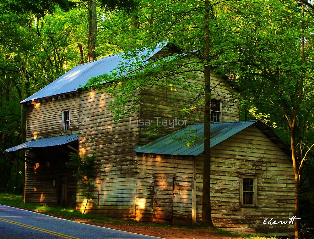 Gilreath's Mill by Lisa Taylor
