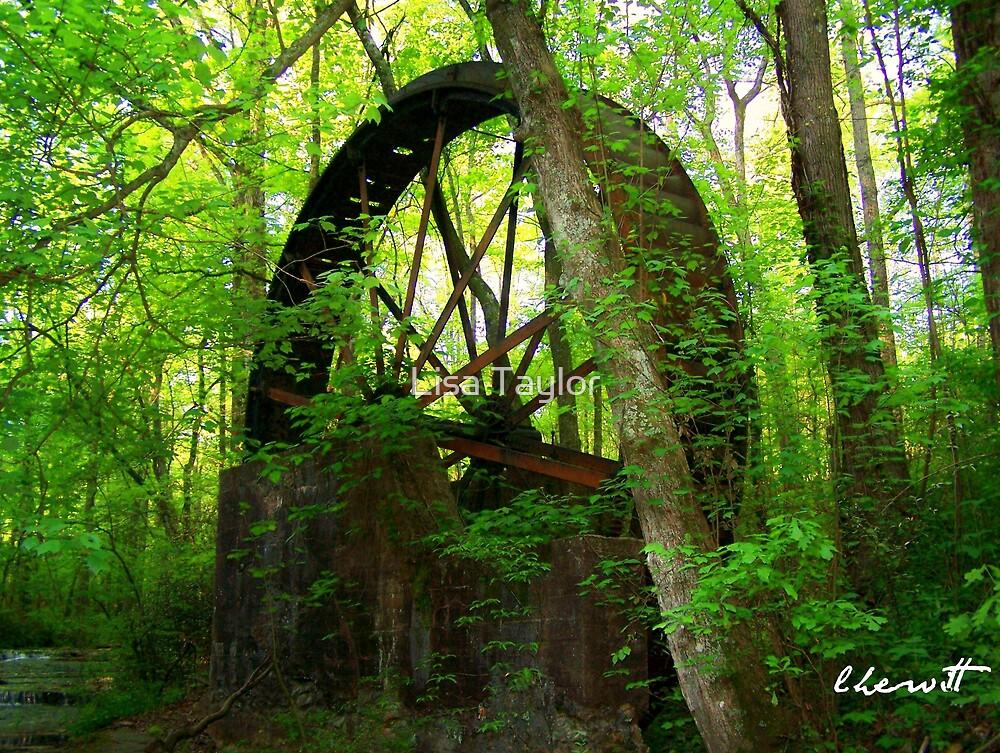 Waterwheel at Gilreath's Mill by Lisa Taylor