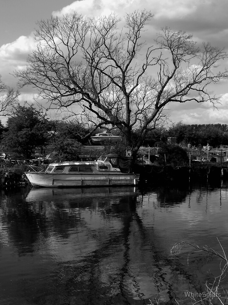 Reflections of Kinewell.  by WhiteSpirits