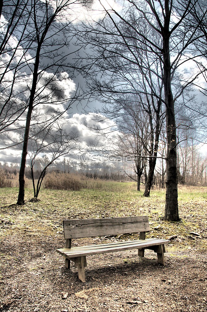 Lonely Bench by Misti Love