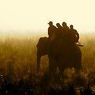 Stalking Dawn Light by Gina Ruttle  (Whalegeek)