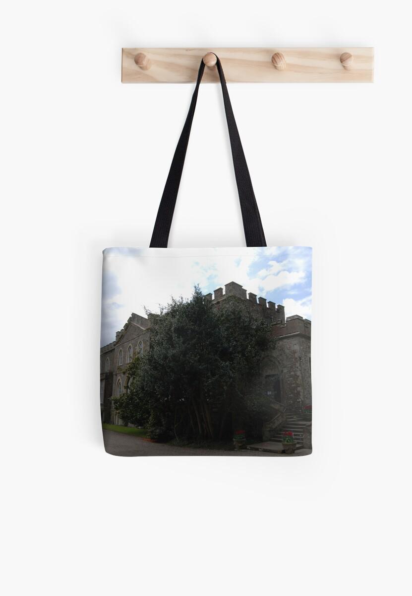 Hartland Abbey by imageworld