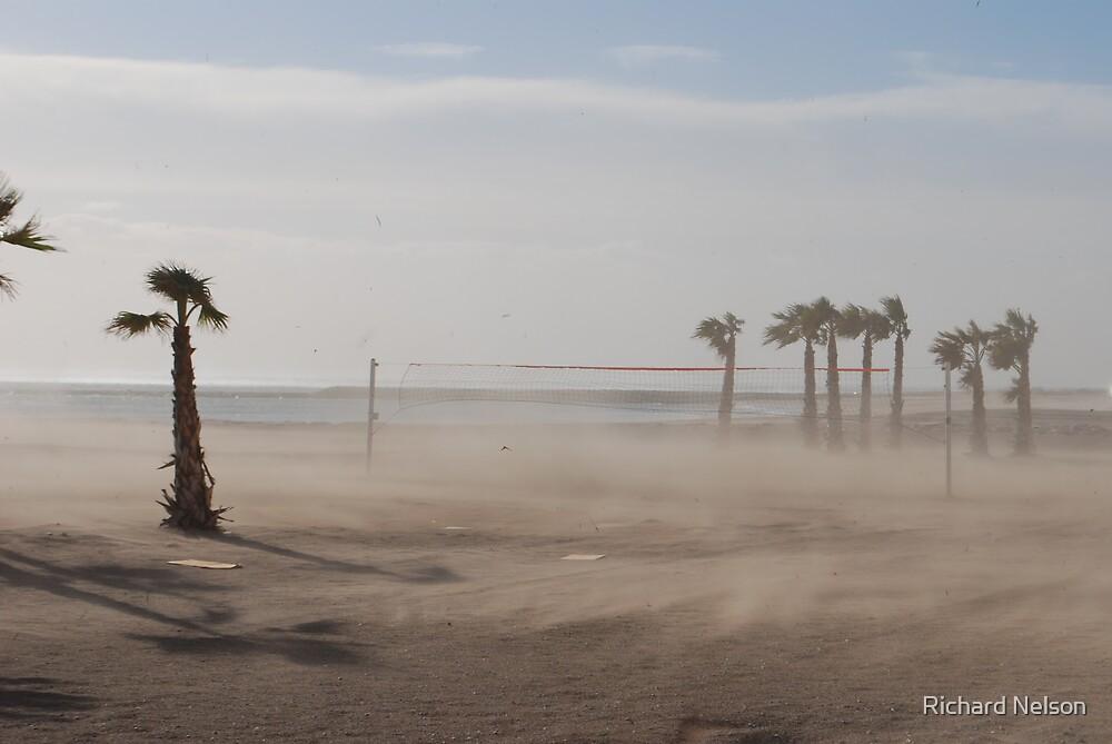 Sandstorm by Richard Nelson