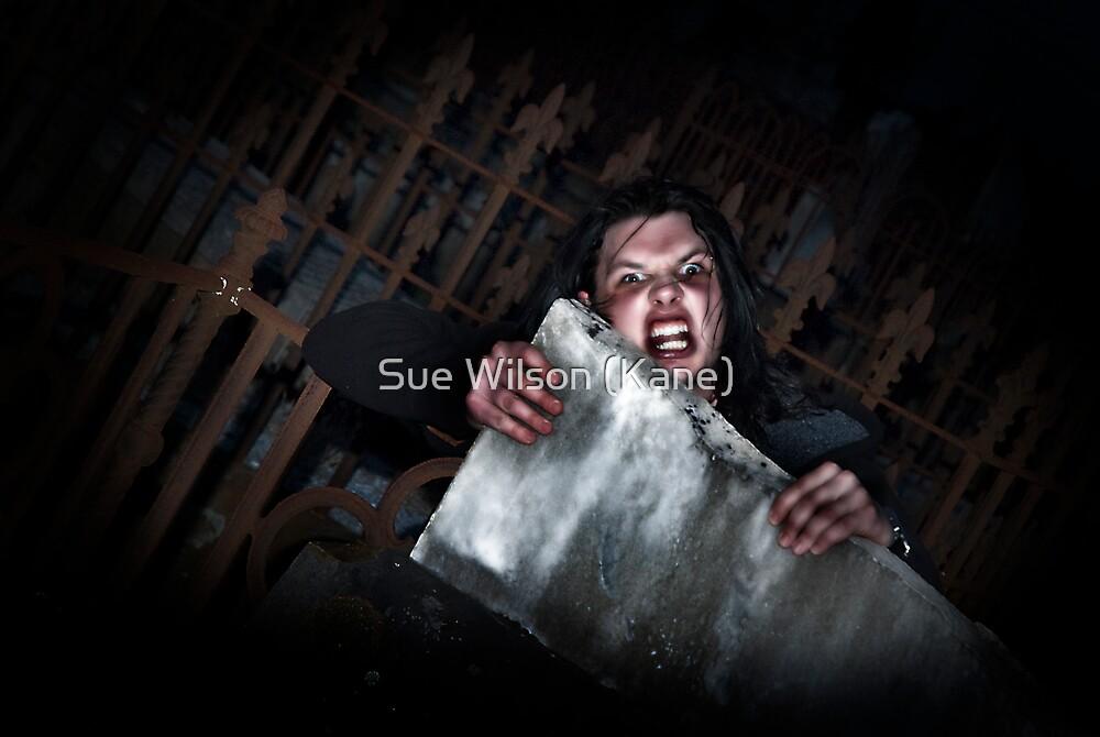 The dark side by Sue Wilson (Kane)