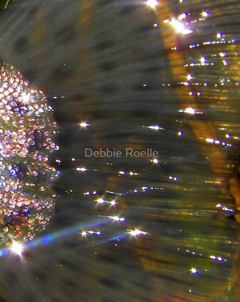 Shimmer by Debbie Roelle