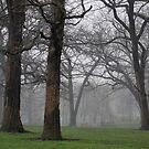 Thomas Mitchell Park 1 by JMerriman