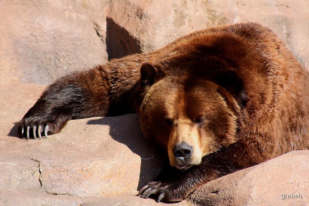 Teddy Bear by grebeh