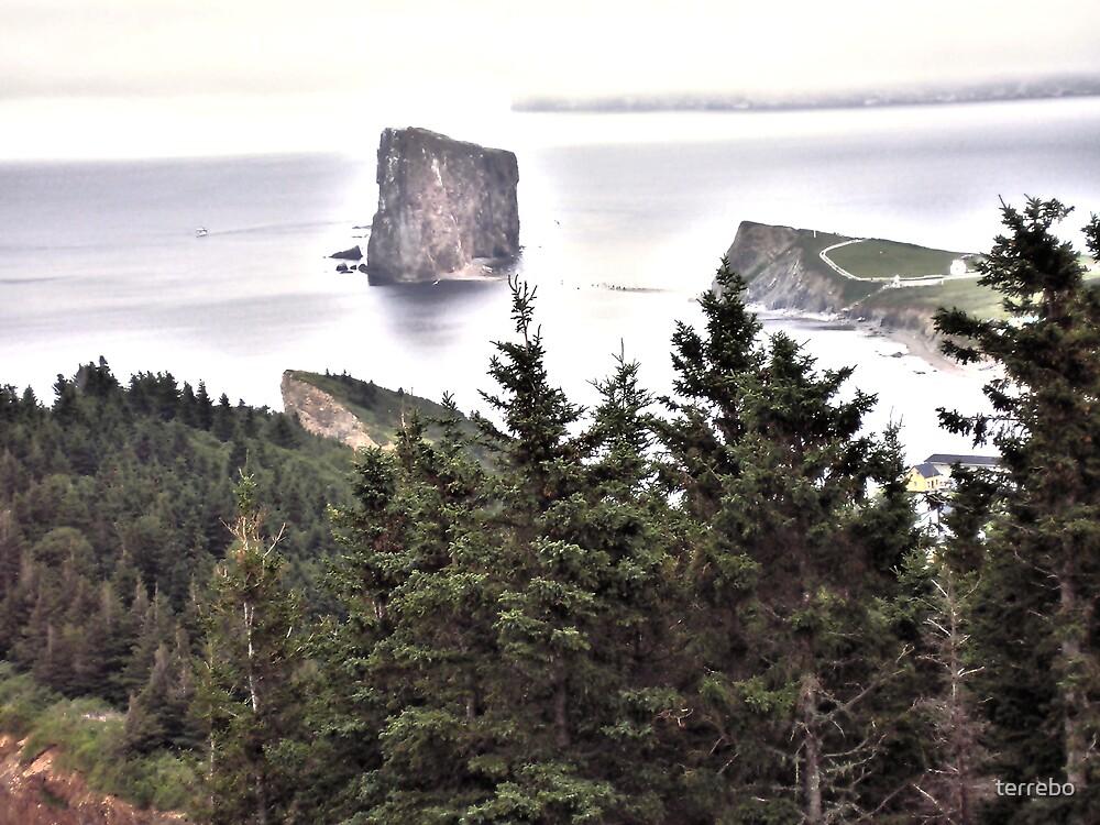Costal Rock In Fog  by terrebo