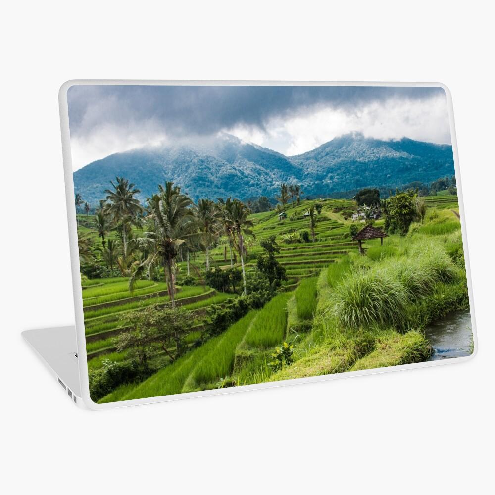 Campos de arroz de Bali, Indonesia Vinilo para portátil