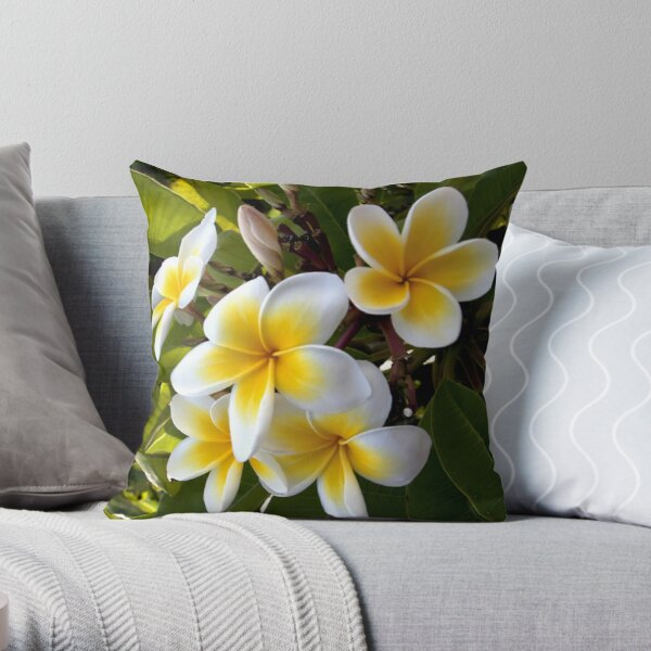 Frangipani Blossoms Throw Pillow