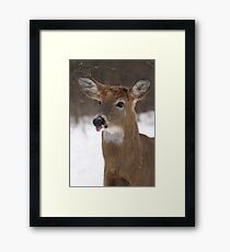 No Manners Framed Print