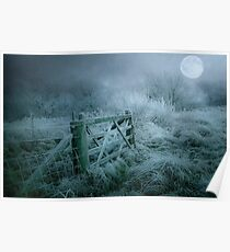 Frosty moonlit night Poster