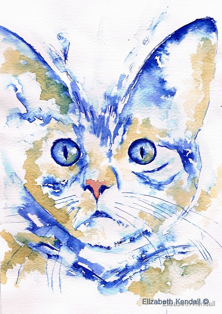 A cat's face by Elizabeth Kendall