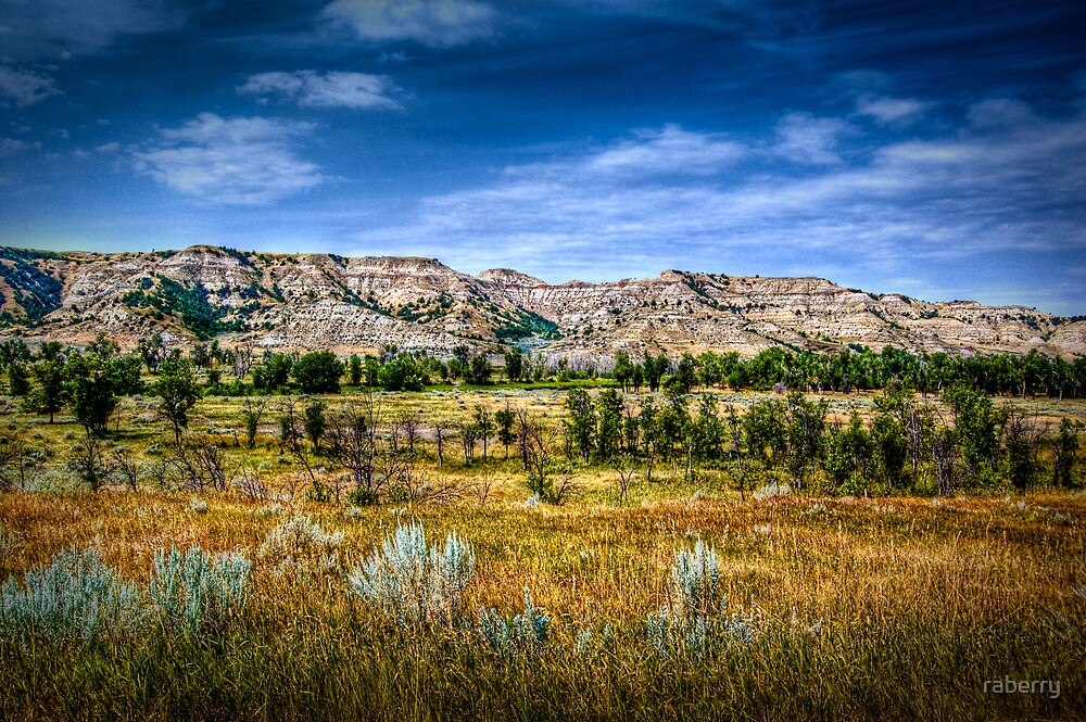 """""""Badlands"""" by raberry"""
