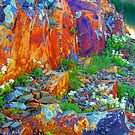 nature's pigments by Robert C Richmond