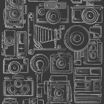 Paparazzi Grey by zomboy
