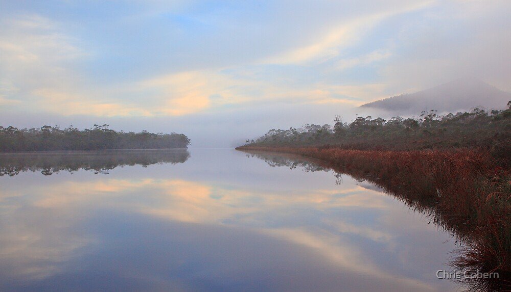 Morning mist on the Huon River by Chris Cobern