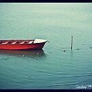 Lone Boat by sandy1984
