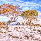 Chilling Out # 3 - Snowy Mountains NSW Australia - Landscape version by Philip Johnson