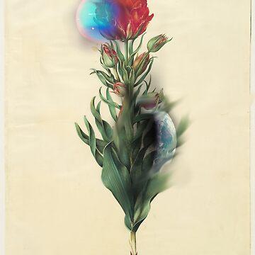 FlowerPlanet by Barnewitz
