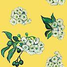 Gum Blossoms - Yellow by John Klein