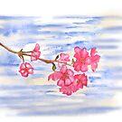Cherry Blossoms by RavensLanding