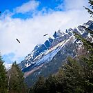 Valleyof the Eagles by Yukondick