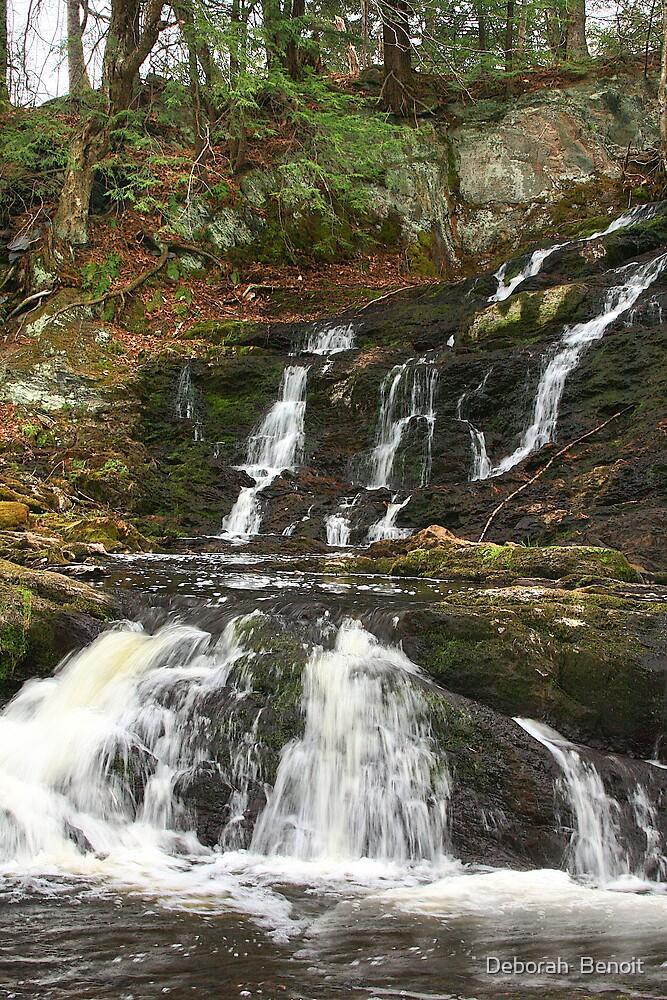 Waterfall Fairfield 2 by Deborah  Benoit