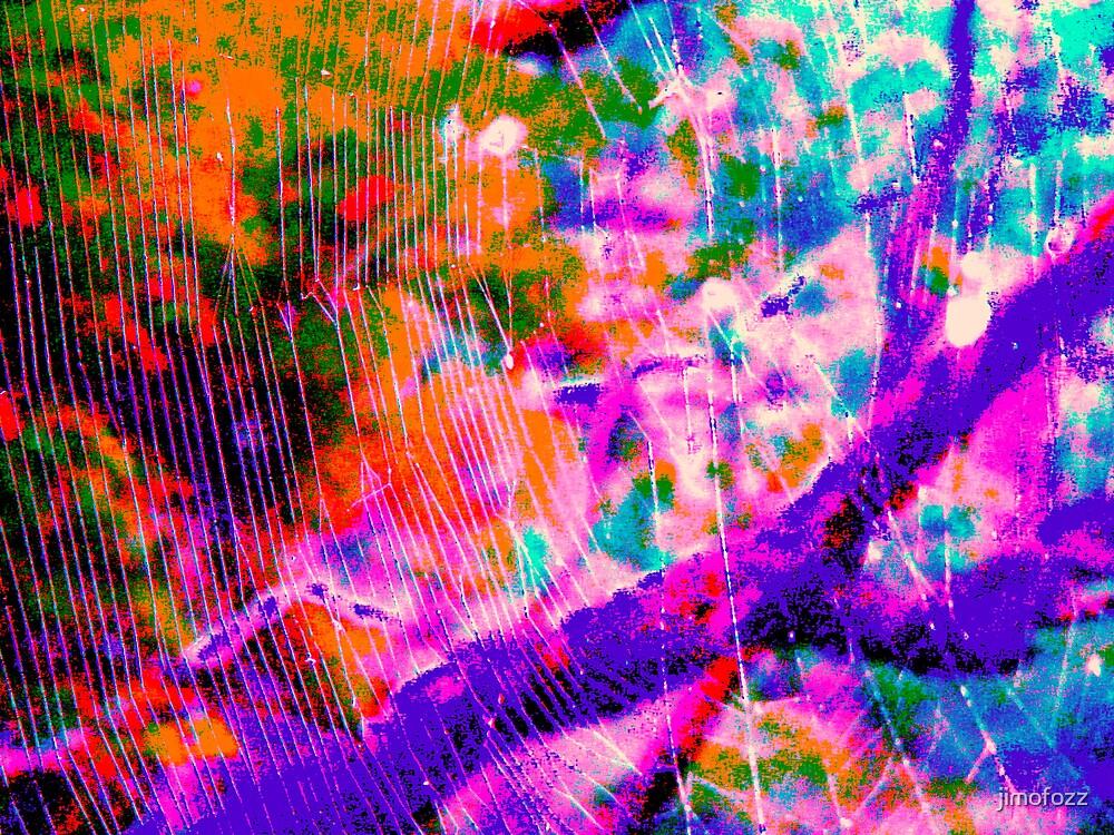 web of light by jimofozz