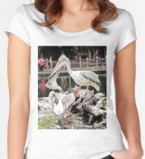 """How's The View?"", Photo / Digital Painting Women's Fitted Scoop T-Shirt"