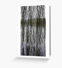 View through the willow Greeting Card