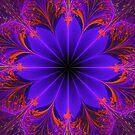 Mystical Neon by Barbara A Lane