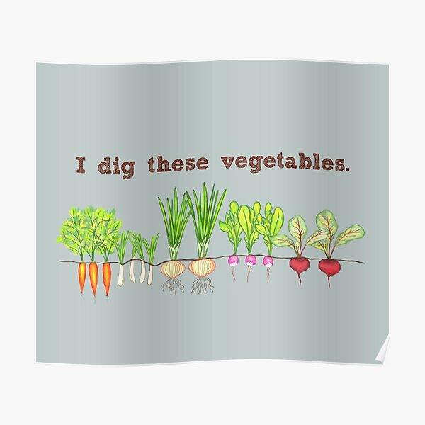 I Dig These Vegetables Poster