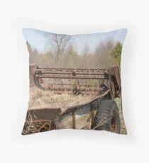 Not taking anymore crap! Throw Pillow