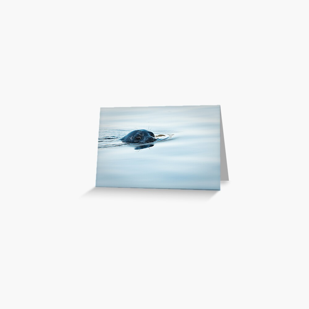 Who is Watching Whom: Seal, Active Pass Greeting Card
