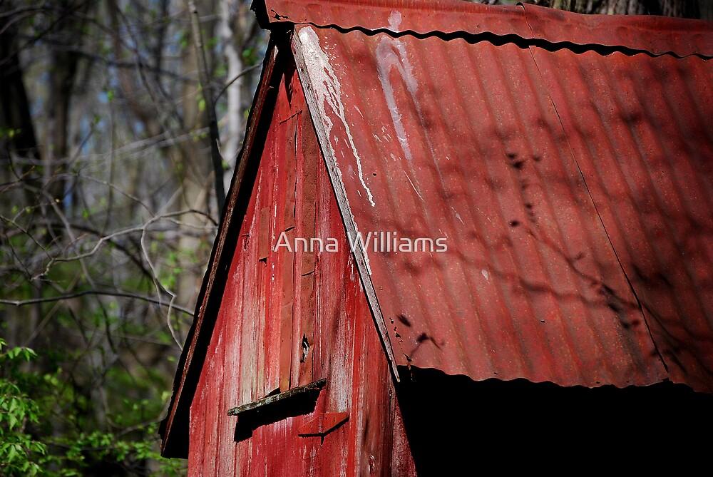 Lost treasure by Anna Williams