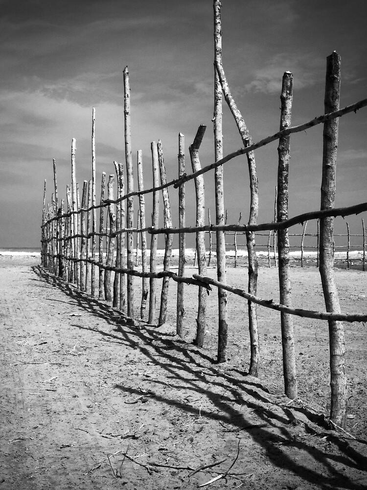 Beach Fence by Carlos Restrepo