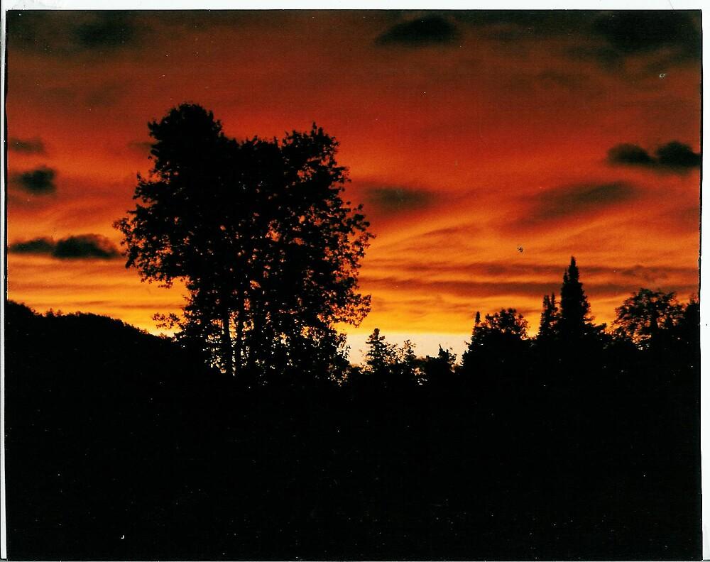 red sky in coe hill by mizvicki