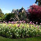 Lower Gardens, Bournemouth 2 by bubblebat