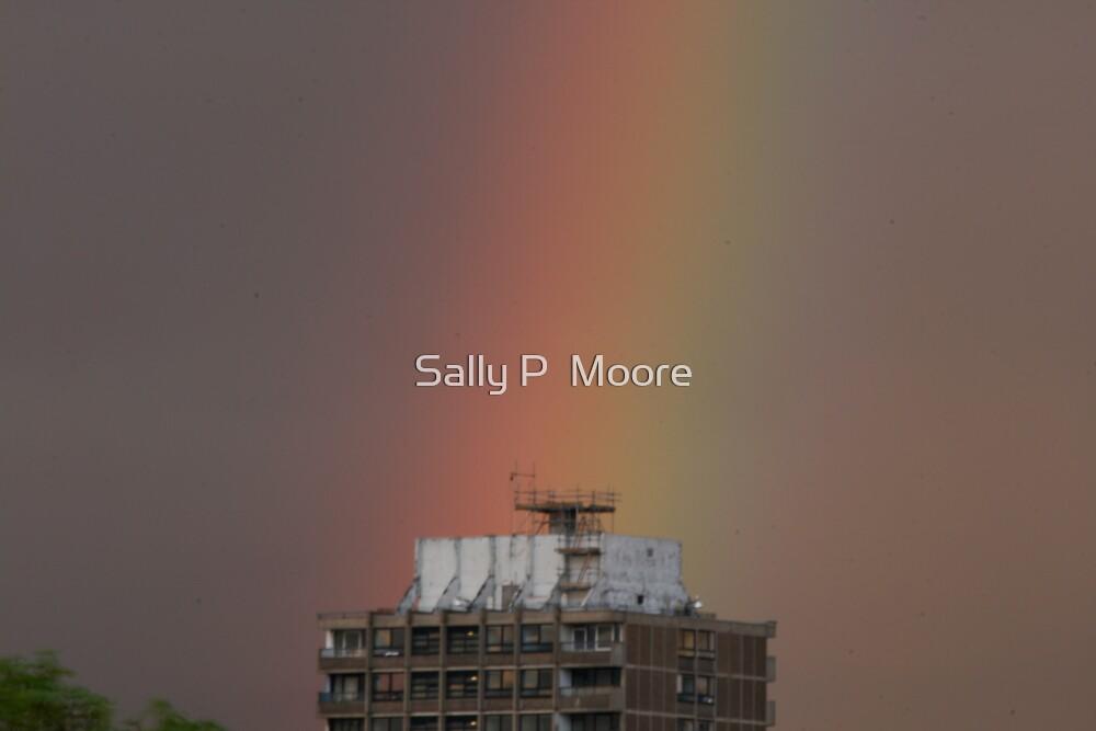 Rainbow Three by Sally P  Moore