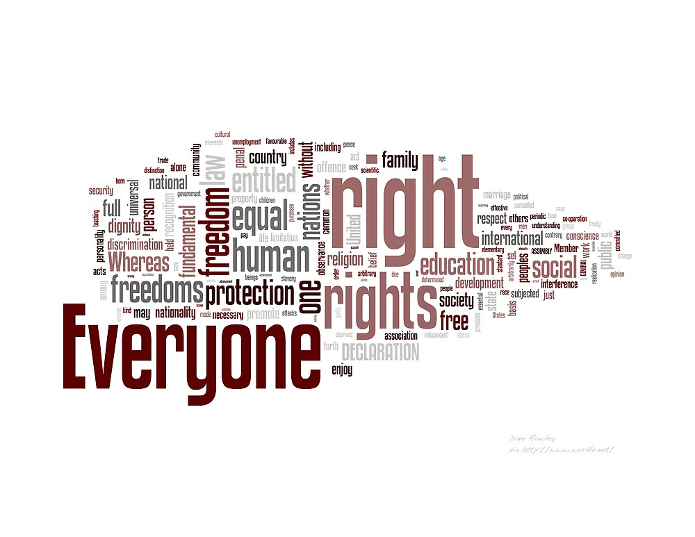 Quot Universal Declaration Of Human Rights Quot By Dave Rowley