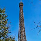 Eiffel Tower Postcard, Paris by Steve Rhodes