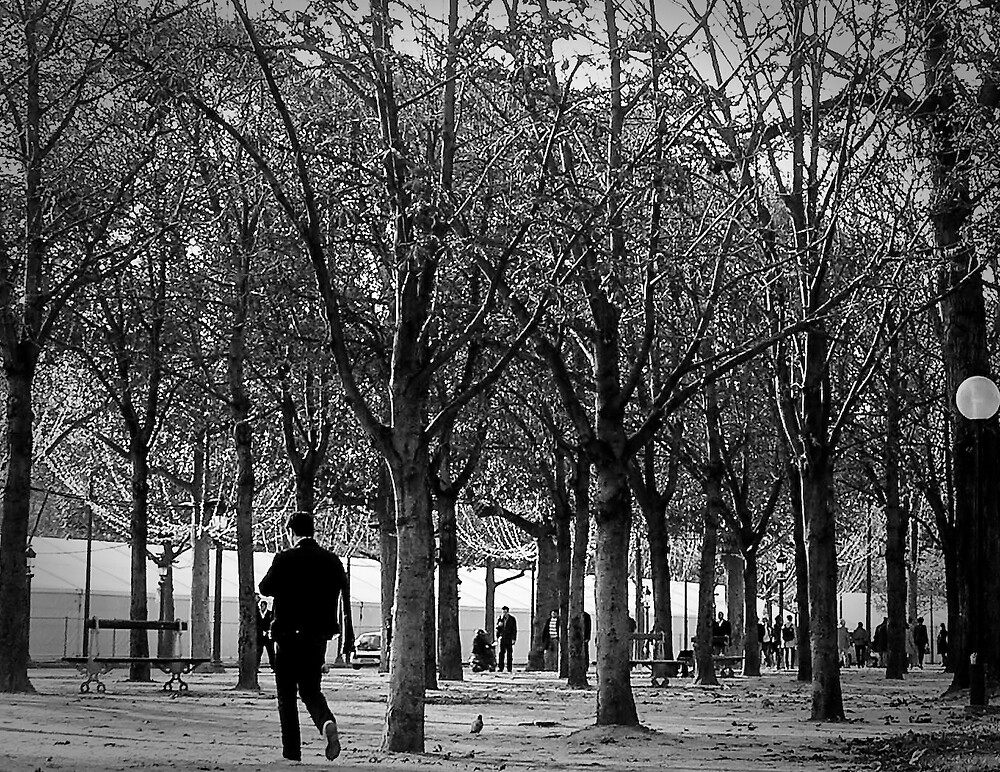 A Walk In the Park, Paris by Steve Rhodes