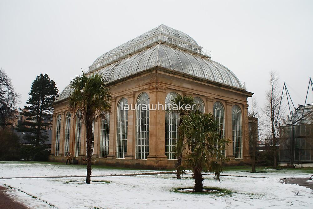 Temperate Palm House in Edinburgh's Botanic Gardens by laurawhitaker