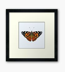 Painted Lady Butterfly Watercolor Painting Wildlife Artwork Framed Print
