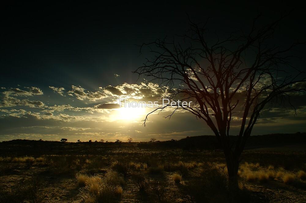 Kalahari Sunset by Thomas Peter