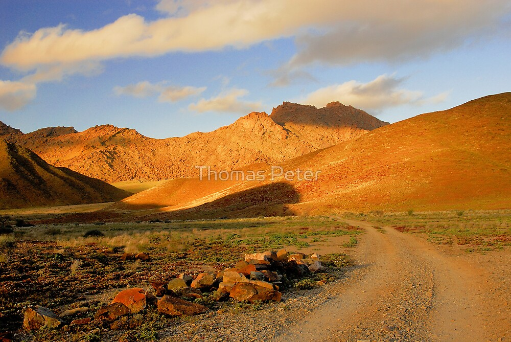 Richtersveld National Park by Thomas Peter