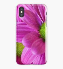 Macro violet flower and purple petals. Open flowers. iPhone Case